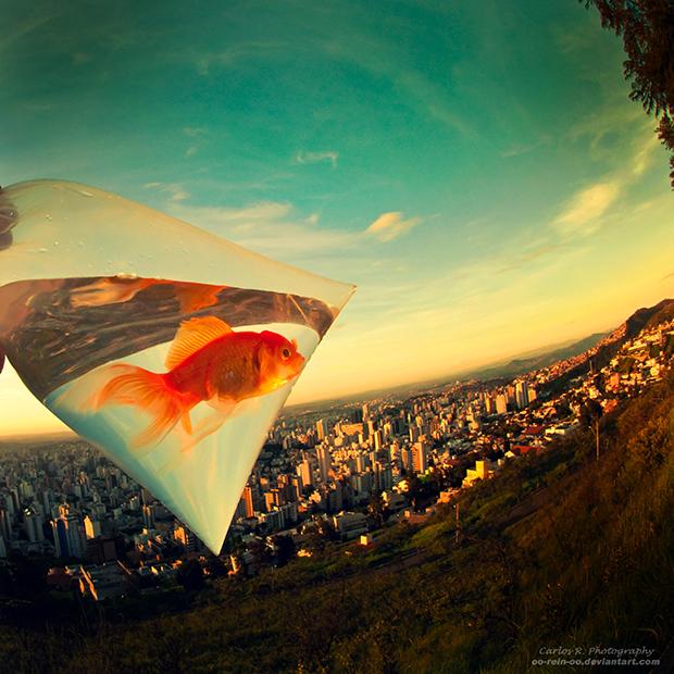 Life In A Metropolis by oO-Rein-Oo