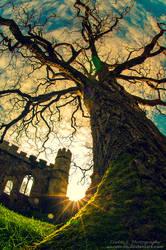 Sunny Castle Tales by oO-Rein-Oo