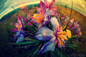 In Bloom For A Leak Of Colors by oO-Rein-Oo