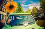 Sunny Amsterwonderland take ii