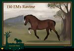 130 EM's Ravine**