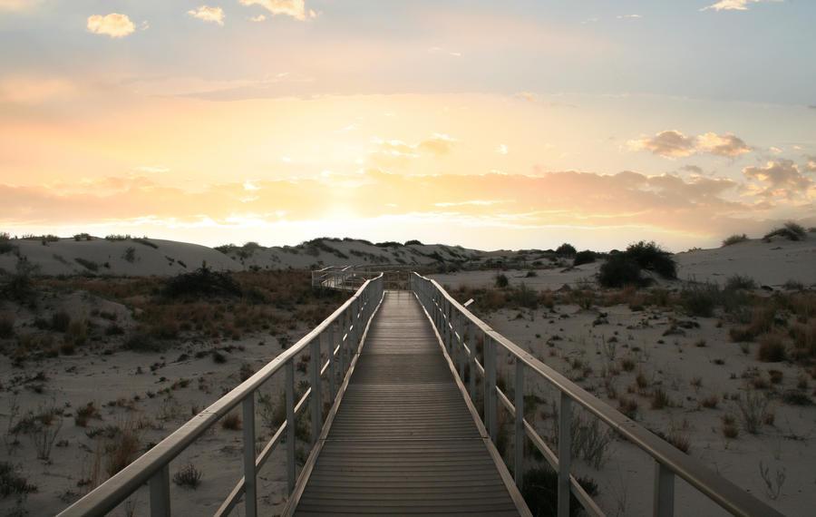 premade background - 006 White Sands