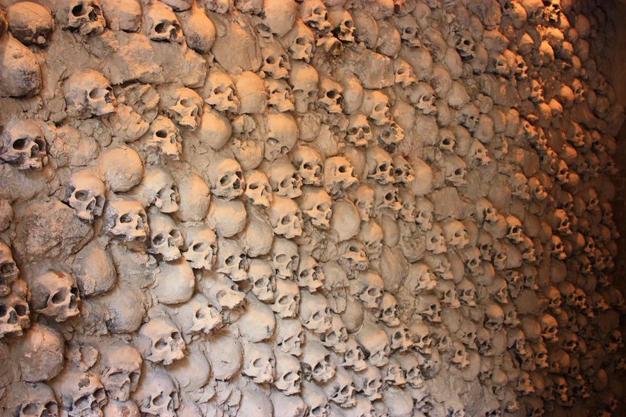 bones - 004 skull wall by thalija-STOCK
