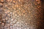 bones - 004 skull wall