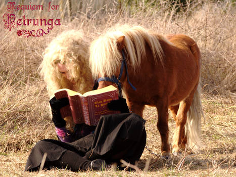 M.C. - Book and Poney