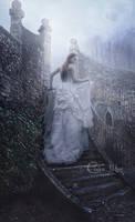 The Silent Escape by Tifareth