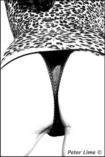 Leopard by PeterLime