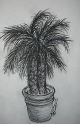 Dreamy Plastic Palm by Ryachanira