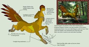 Biology of Mythology Equestrosapian (Centaur)