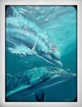 Dolphin_friends by HeidiLRxx