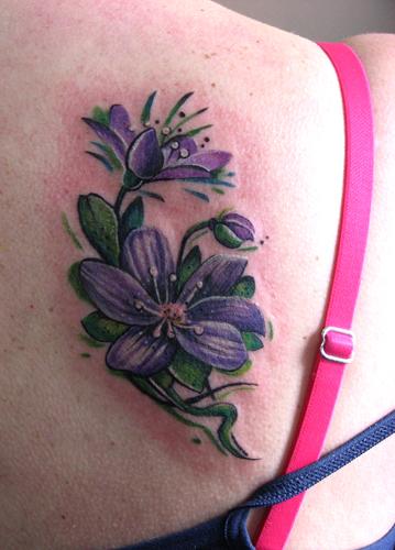 flower violet by evlogievapetja on deviantart. Black Bedroom Furniture Sets. Home Design Ideas