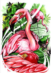 flamingo by EvlogievaPetja