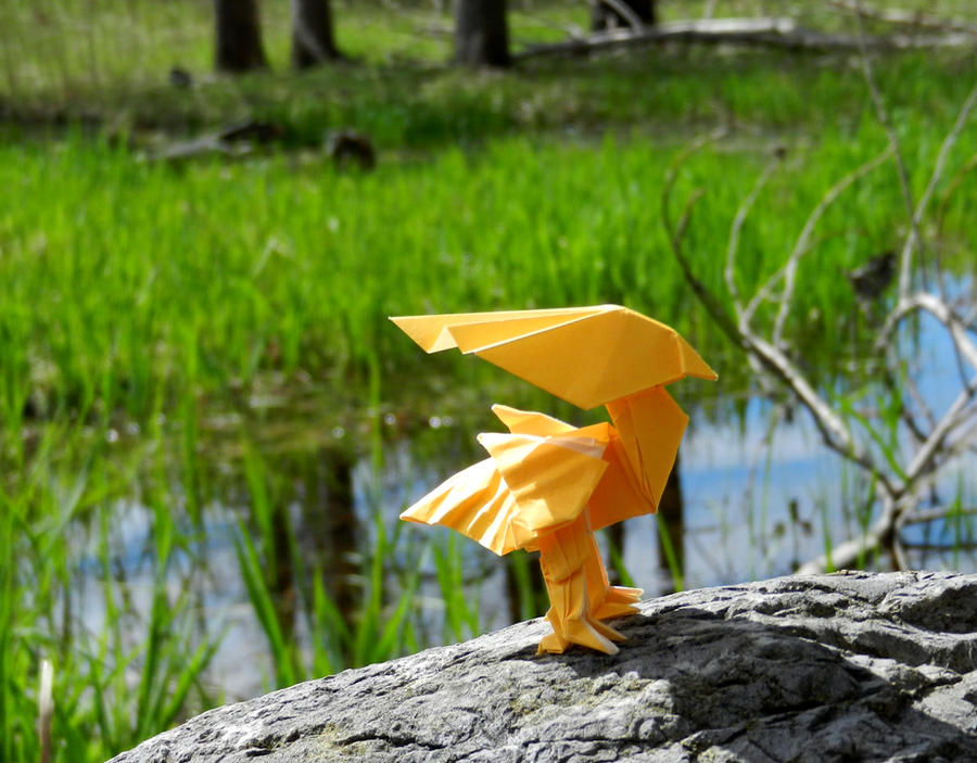 A wild Chocobo appears