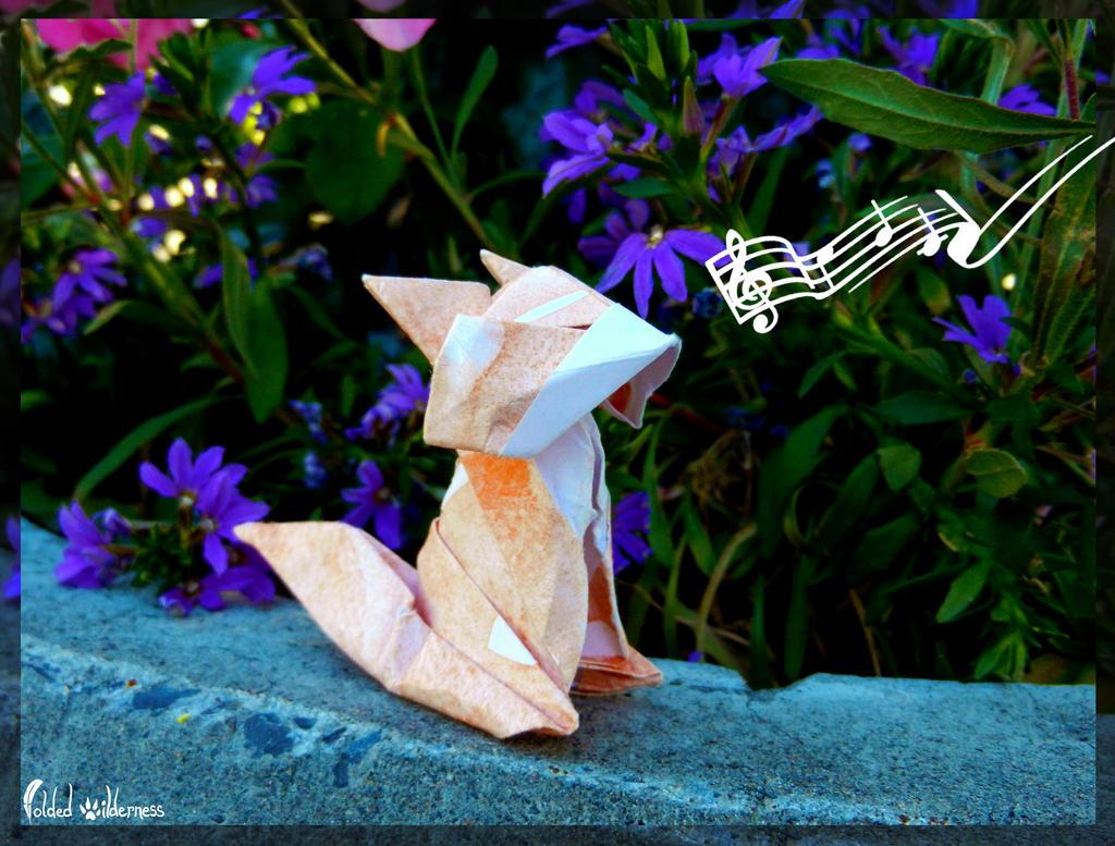 Happy Singing Fox