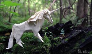 The Magical Unicorn