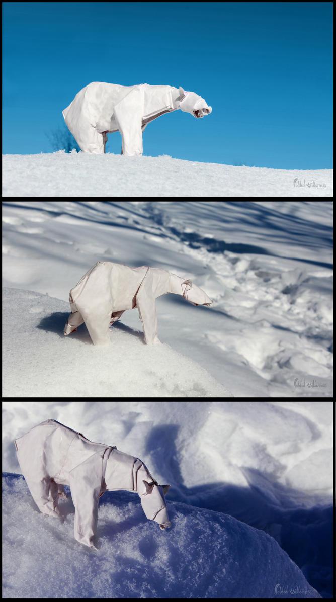 The Mighty Polar Bear by FoldedWilderness