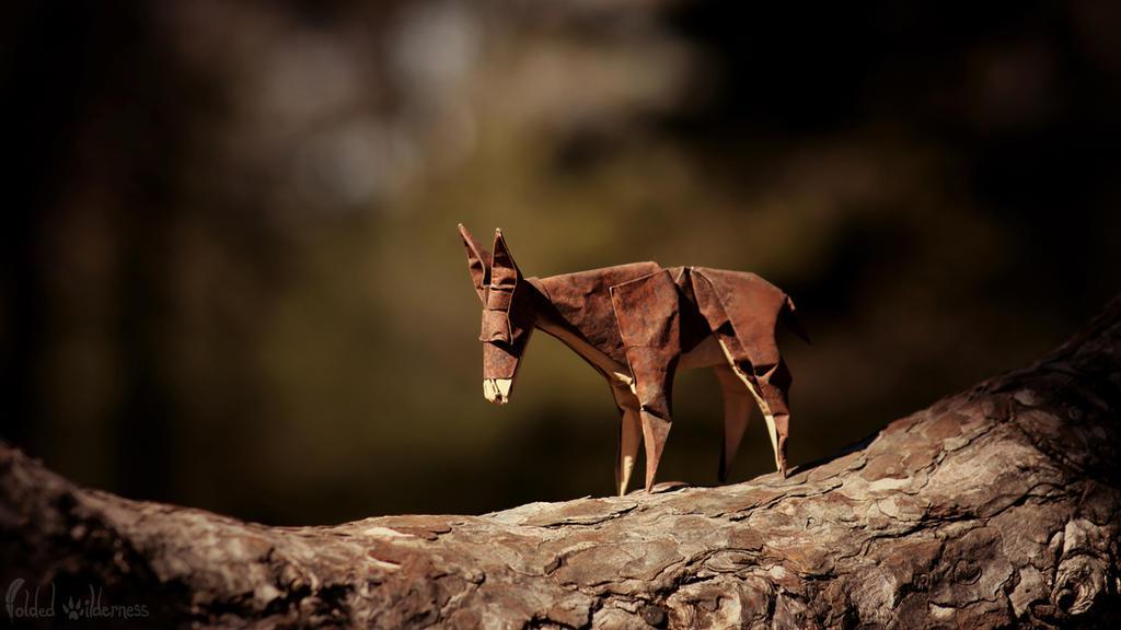 A Donkey's Journey by *FoldedWilderness