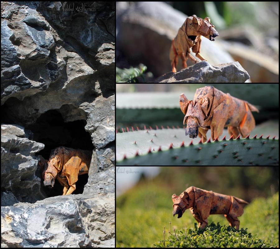 Spotted Hyena by FoldedWilderness