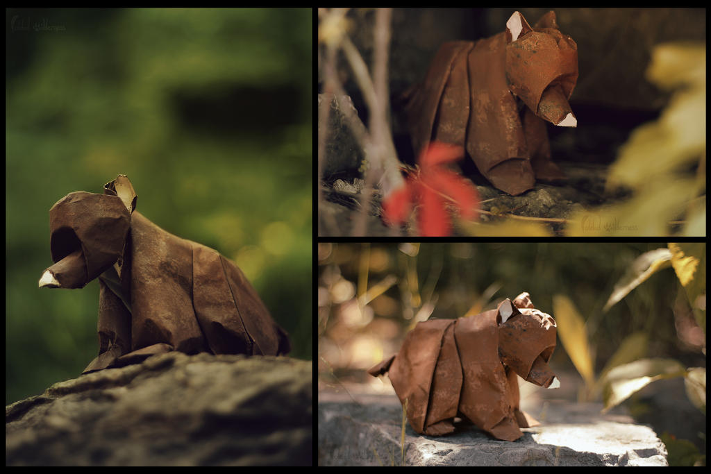 Origami Bear Cub by FoldedWilderness