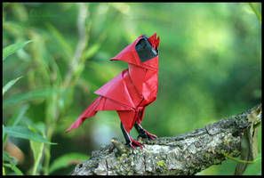 Origami Singing Cardinal by FoldedWilderness