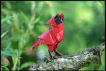 Origami Singing Cardinal
