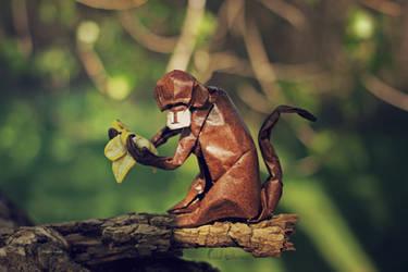 Monkey Business (origami) by FoldedWilderness