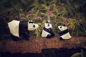 Origami Panda Family by FoldedWilderness