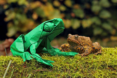 (Origami) Frog and Toad are friends by FoldedWilderness