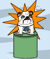 Tank The Bulldog Hero