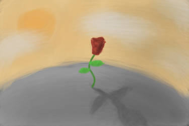 The Solitary Rose