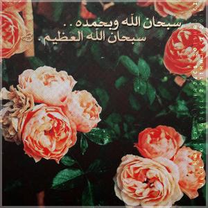 sb7an allah 4 . . by HAJECI