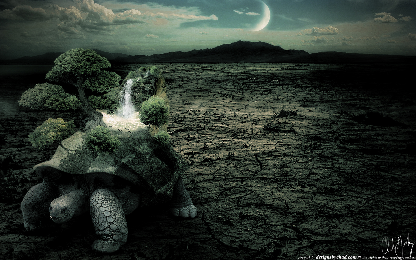 Photo Manipulation Turtle by Chadski51