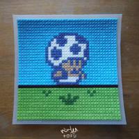 Super Mario 2 (USA) - Toadstool Stich Craft [raw]