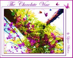 The Chocolate Vine