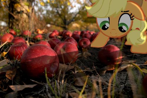 Apple Orchard by DestructoDash