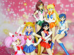 Sailor Moon S.H. Figuarts 6 inners by MoonCollectar