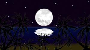 Noite OK