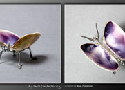 Big Shellfish Butterfly by m0rpheus