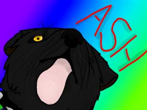 Newwolf1998XD's Profile Picture