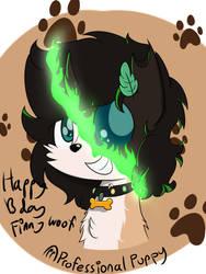 Gift - Finny bday
