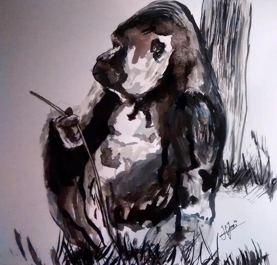 Gorilla by JamieJones93