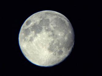 blue moon by D-u-D