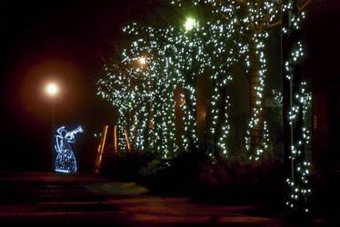 Christmas lights by D-u-D