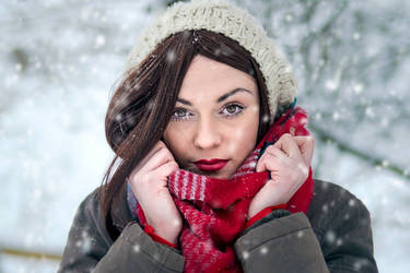 Snowflakes by D-u-D