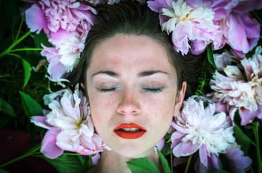 In bloom by D-u-D
