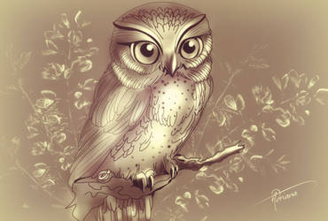 Drawing of an owl made with the mouse of the pc by Adriana-Madrid