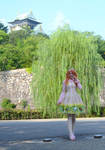 Sweet Lolita in front of Osaka Castle by Sorayachi