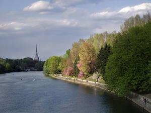 River in spring light