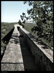 Pont du Gard - 5