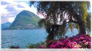 Lugano - 7